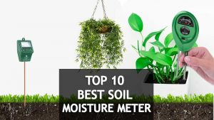 best soil moisture meter for plants