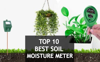 10 Best Soil Moisture Meters For Plants 2018 Reviews & Buyer's Guide