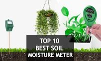 Top 10 Best Soil Moisture Meters – Reviews & Buyer's Guide