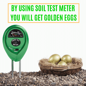 Get Golden Eggs by using soil meter