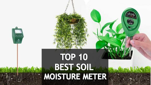 10 Best Soil Moisture Meters For Plants 2019 Reviews & Buyer's Guide